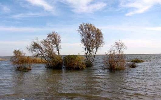 Atrak River Margin