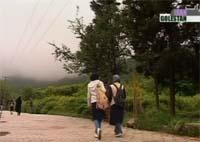 جنگل ناهارخوران و النگ دره در استان گلستان (پارت اول)