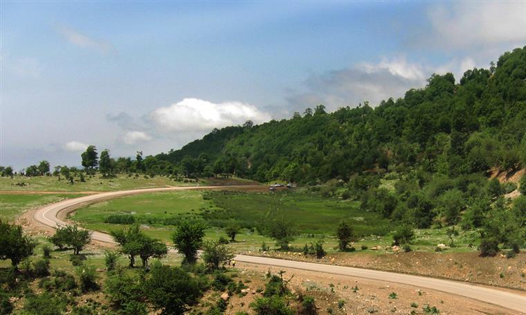 جنگل اولنگ - بادو